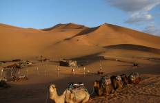 Andalucia & Morocco (10 D) Tuesdays Tour