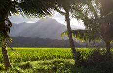 Hawaii - Hidden Treks of Hawaii Tour