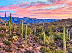 Mexicos Great Copper Canyon including Phoenix Accommodation Summer Tour