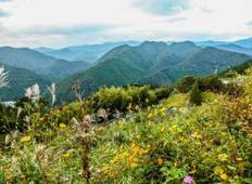 Kumano Kodo self-guided walking 7 days Tour