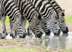 Spectacular South Africa featuring Swaziland Tour