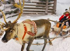Christmas in Finland - 7 Days Tour