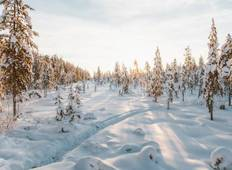New Year\'s in Finland - 6 Days Tour