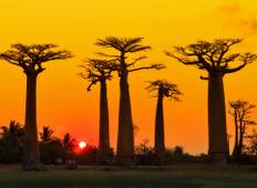 Madagascan Discoverer Tour