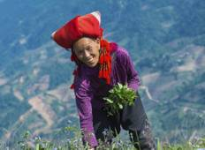 Essential Sapa  Tour