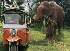 A 5 Day Tuk Tuk Adventure in beautiful Chiang Mai Tour