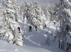 Black Forest Cross-country Ski Tour Tour