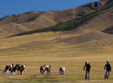 Cycling in Mongolia - Naadam Festival Special Departure Tour
