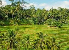 Bali Family Holiday with Teenagers Tour