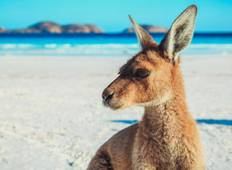 Perth to Adelaide  - The Great Australian Wilderness Journey Tour