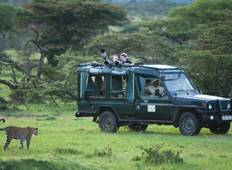 Photographic Safari Tour