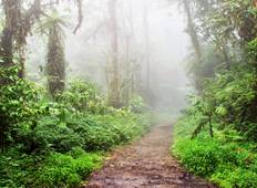 Arenal Volcano & Monteverde Cloud Forest Costa Rica, the perfect combination Tour