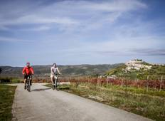 Istria - the green paradise of the Adriatic Sea Tour