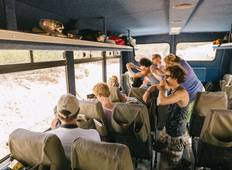 The Kruger Big-5 - Camping & Accommodated Tour