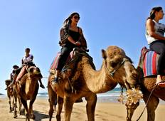 Morocco : The Northern Stars Tour