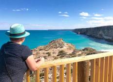 Head of Bight Whale Watching Tour Tour