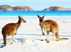 Australia – Beachside Wildlife Adventure Tour
