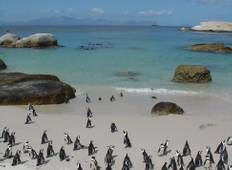 11 Days Cape Town, Garden Route & Kruger Tour