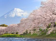 Anime Pioneer Adventure - 8 Day Japan Cherry Blossom Tour With Anime (Osaka to Tokyo) Tour