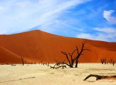 11 Days Cape, Kalahari, Namibia Tour