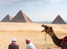 Splendours of Egypt (2019) Tour