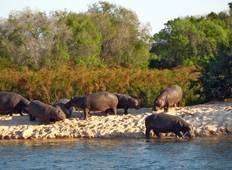 Okavango Wilderness Trail Accommodated (11 destinations) Tour
