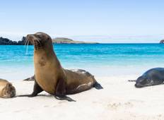 Wonders of Peru with Galápagos and Amazon Cruise 2019 Tour