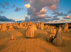 Full Day Pinnacles, Koalas and Sand Boarding 4WD Adventure Tour