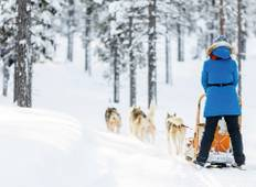 The Lapland Express Tour
