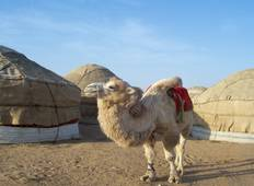 On the Footsteps of the Silk Road Tour