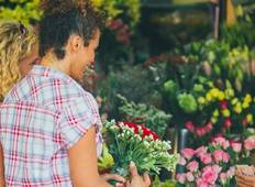 Flavours of Vietnam Tour