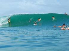 11 Days Bocas Surf Camps Guiding by Selina Surf Club Tour