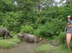 Nepal Wildlife Safari and Rafting Tour Tour