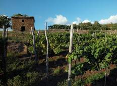 Istrian wine roads short - 4 days tour Tour