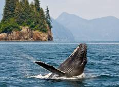 Alaska, Fjords & Glaciers (from Ketchikan to Juneau) Tour