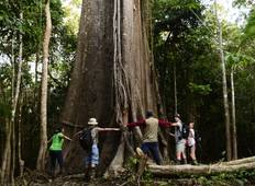 2-Day Iquitos Jungle Tour at Maniti Eco-Lodge Tour