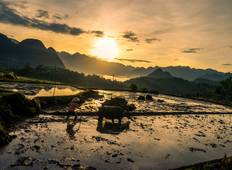 4 Days: Hanoi Discovery - Mai Chau Cycling - Pu Luong National Reserve Trekking and Local Experience Tour