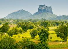 Sri Lanka Classic Tour (8 days) Tour