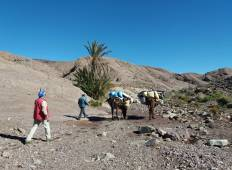 Trek Jebel Saghro 8 Days Tour