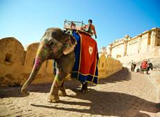 Golden Triangle Tour 4 Days & 3 Nights Tour