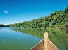 8-Day Iquitos Jungle Tour at Maniti Eco-Lodge Tour