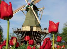 Holland during tulip blossom Tour