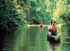 12-Day  All Inclusive Pacaya Samiria Reserve Tour Tour
