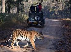 Taj, Tigers & Lakes - Golden Triangle with Ranthambore & Udaipur Tour