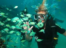 Thai Intro + Dive Tour
