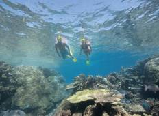 Boutique Brisbane to Cairns Tour - 7 Days, small group Tour