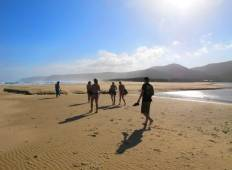 Garden Route & Addo Adventure 5D/4N Tour