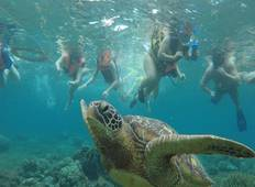 3 Days Dumaguete Sea and Nature Adventure Tour Tour