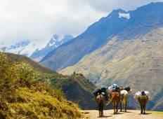 8 Day Salkantay Trekking Adventure Tour