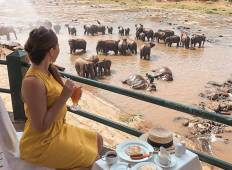 Lifetime Experience in Sri Lanka Tour
